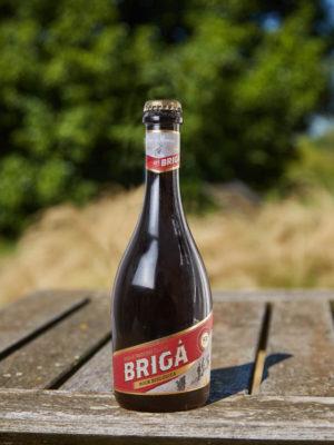 BIRRA BIO BRIGA BOCK - CL 50