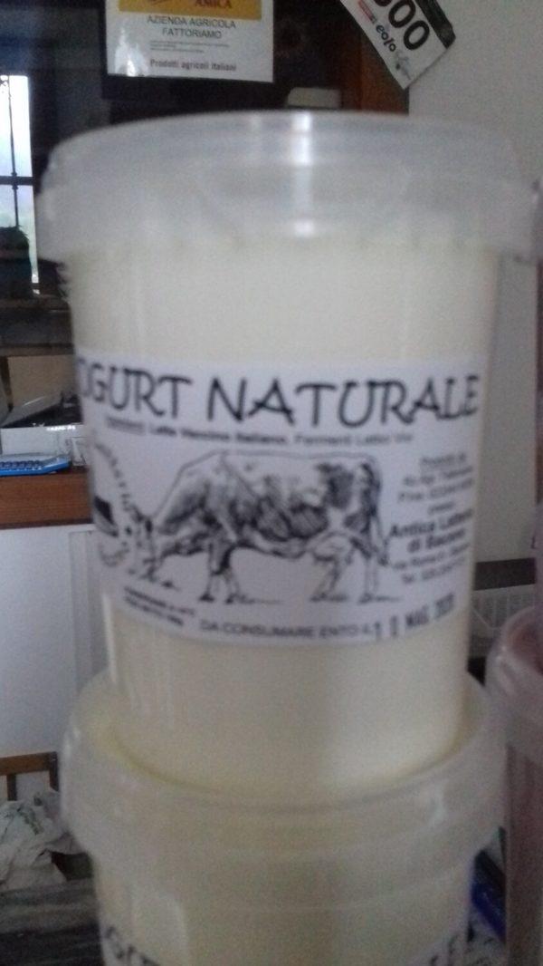 YOGURT NATURALE - 500 G