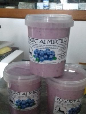 YOGURT AI MIRTILLI - 500 G